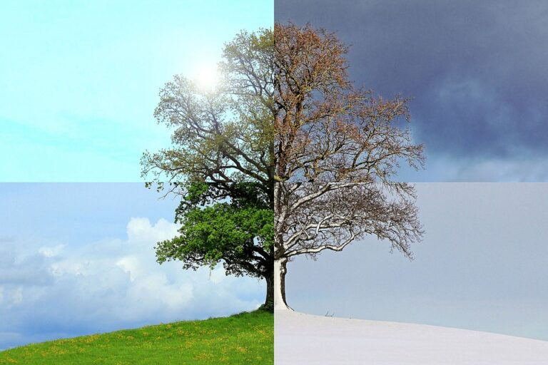 Moods That Change With The Seasons